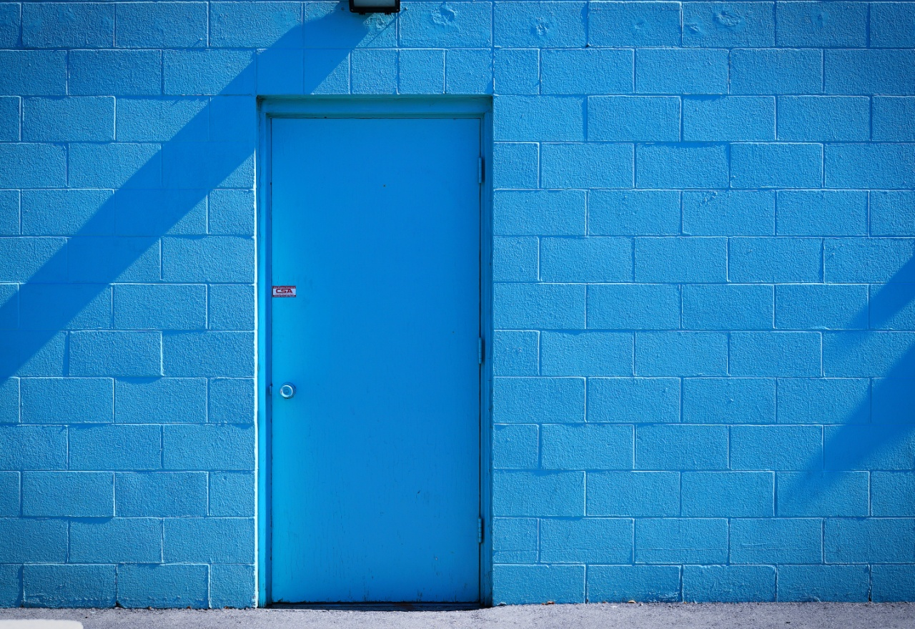 Bluedoor1resize